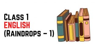 [Pdf] NCERT Books For Class 1 ENGLISH (Raindrops – 1) Download
